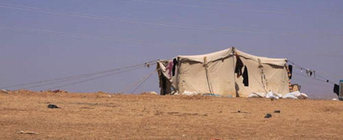 tent-500